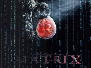 The-Matrix-Wallpaper-the-matrix-2528205-1024-768